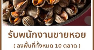 รับสมัครพนักงานขายหอย ลงพื้นที่ 10 ตลาด รายได้ดี